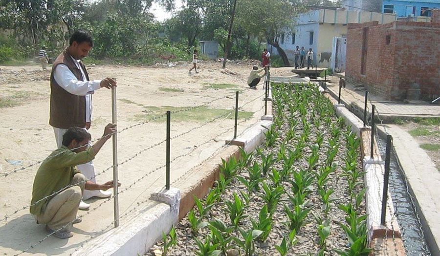 De-centralised Wastewater Treatment System Agra