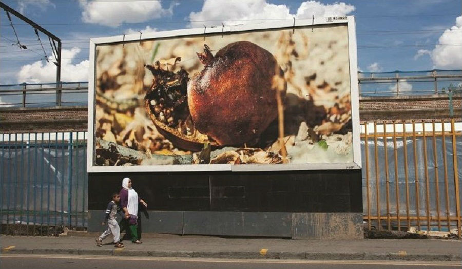 Pomegranate No 1 Hackney, 2014
