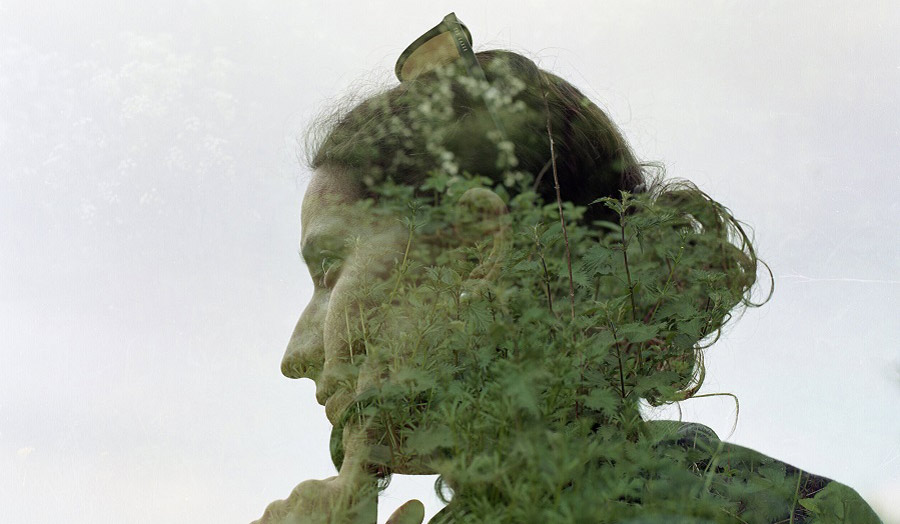 a double-exposure technique of a woman's head with foliage from a tree
