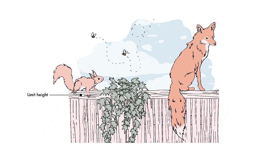 An illustration of a fox and a squirrel on top of a fence and two bees flying