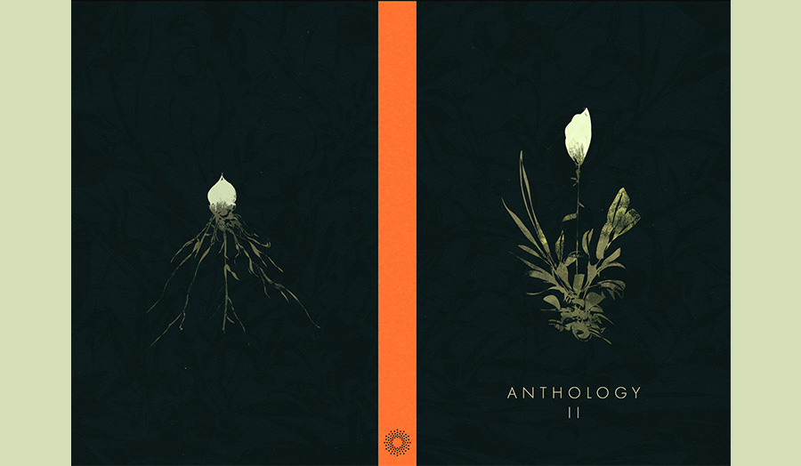 Draft cover design by Karl Fitzgerald, BA Illustration