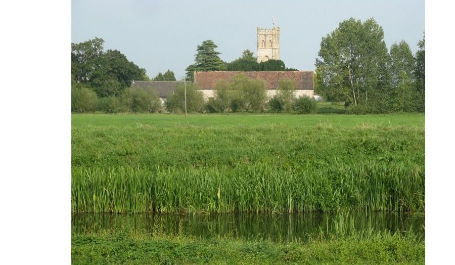 Muchelney, Somerset (photo: Freddie Phillipson)