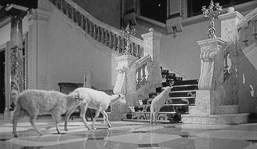still from The Exterminating Angel by Luis Bunuel