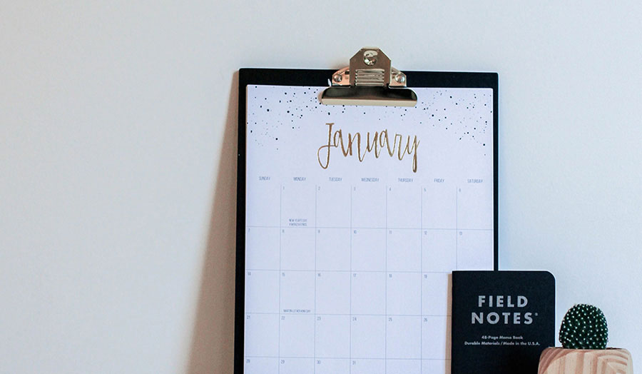 Image of January diary