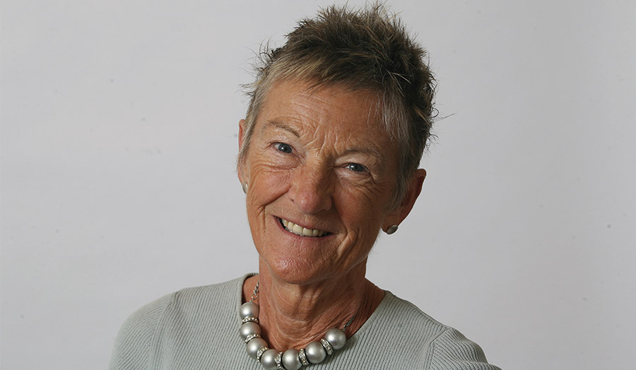 Professor Dianne Willcocks CBE, DL